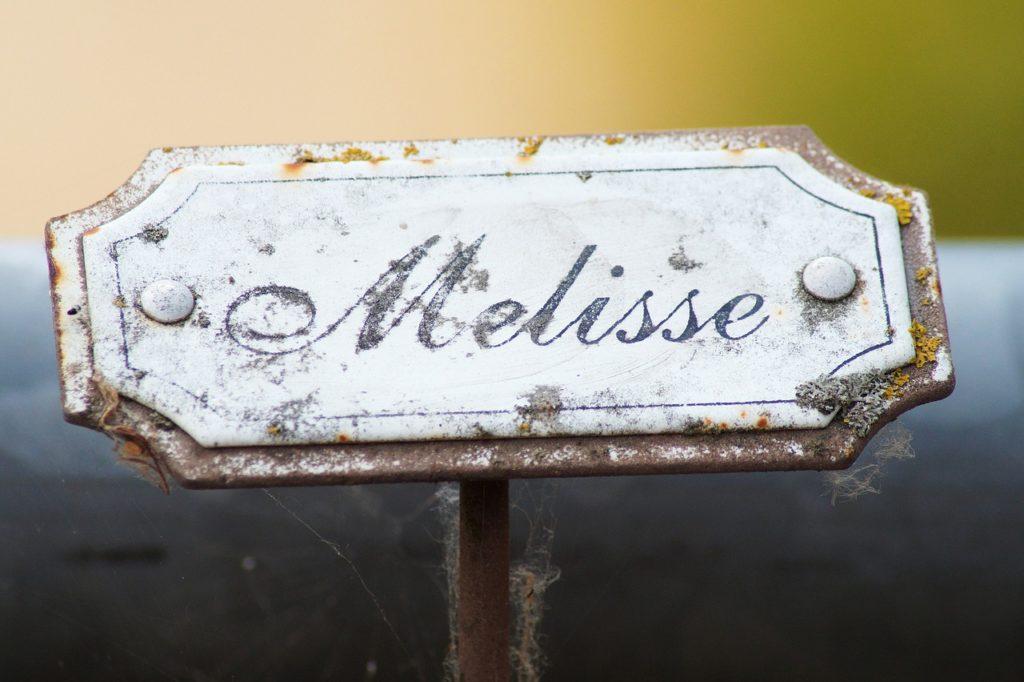 銘板の文字違いの解消方法と対策