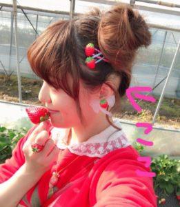 pippi髪型