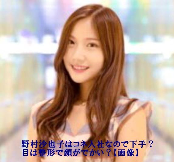 野村彩也子さんの写真の中に文字が【野村沙也子はコネ入社なので下手?目は整形で顔がでかい?【画像】と書いています。】