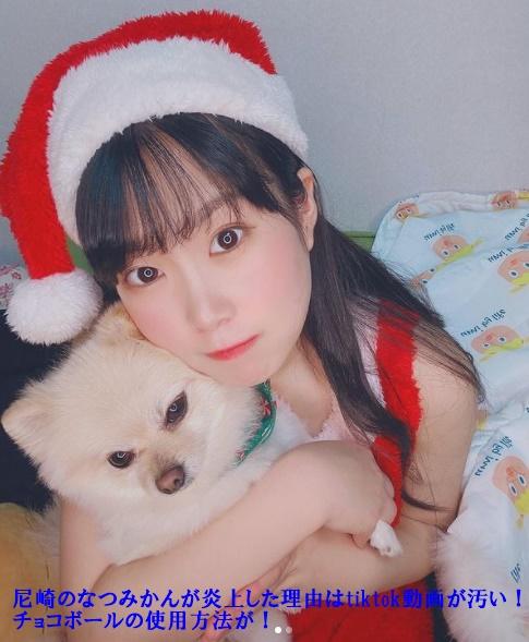 尼崎のなつみかんさんがクリスマス衣装を着て犬を抱いている画像でその画像の中に『尼崎のなつみかんが炎上した理由はtiktok動画が汚い!チョコボールの使用方法が!』が書かれています。