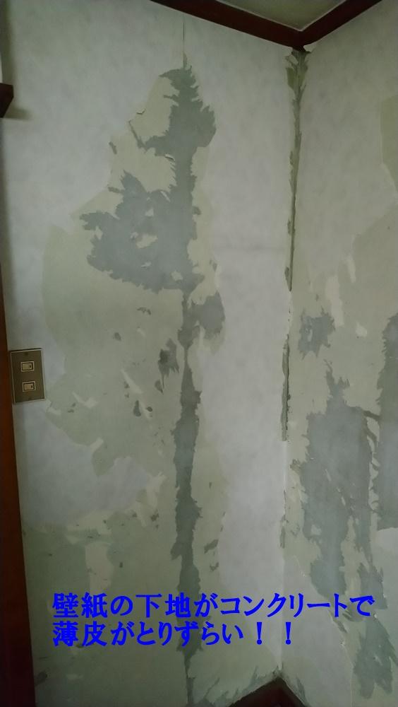 壁紙の下地を撮った写真で薄皮が残っている画像